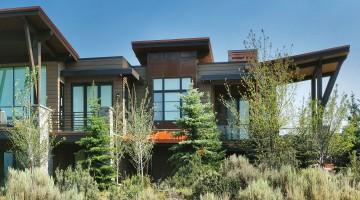 Modern condos inside trees