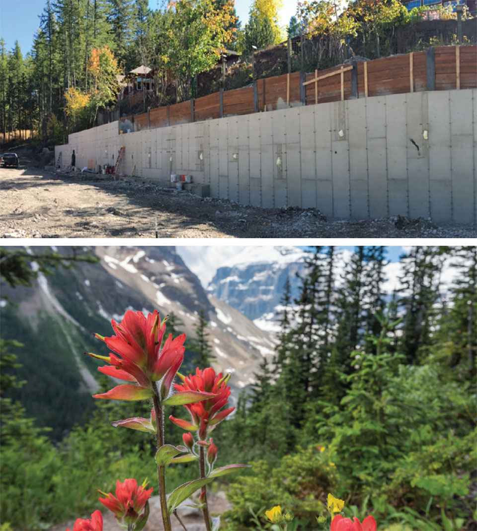 Innovators and Innovations- Flathead Valley Wall and Flowers