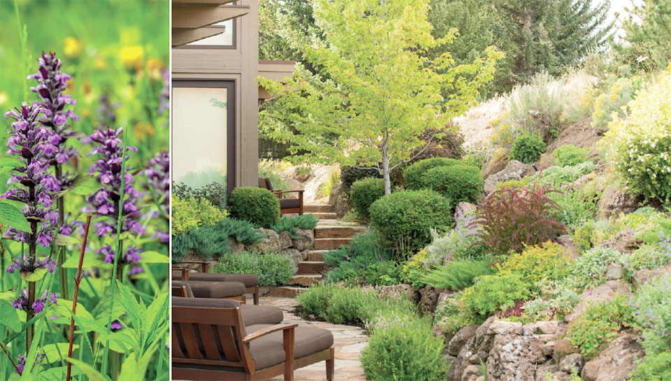 Rooted in the Wood River Valley- Sun Valley Patio