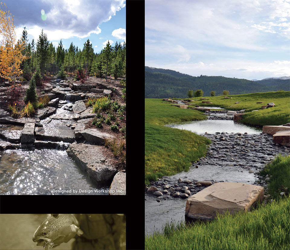 CLEARWATER RESTORATION- Jackson Hole Trout and Ponds