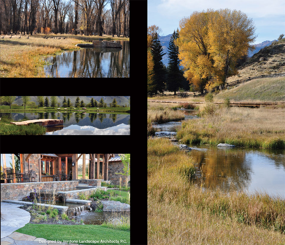 CLEARWATER RESTORATION- Jackson Hole Fall Weather
