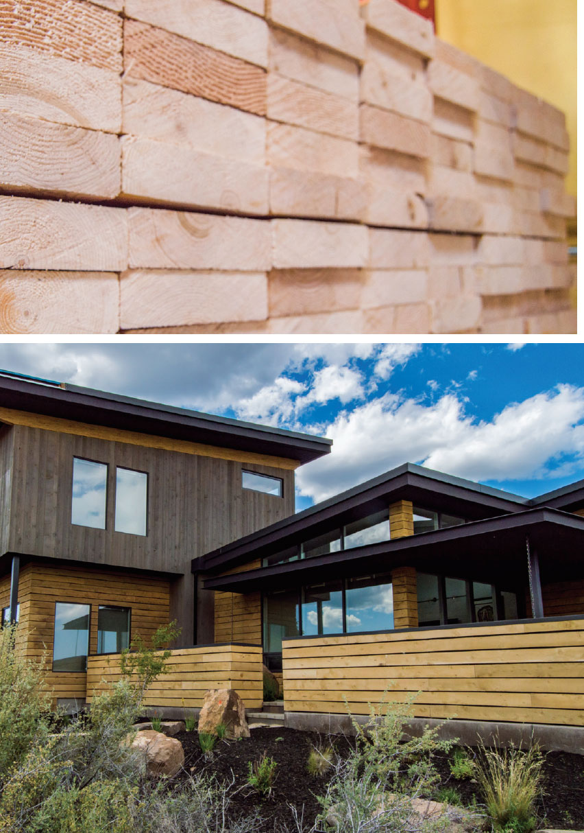 Building Science for A Sustainable Future- Bend Wood and House
