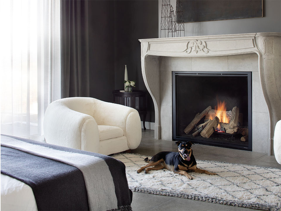 Go West Development- Park City Fireplace and Dog
